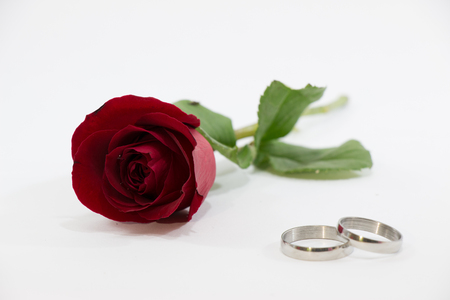 Select Focus Red Rose and engage ring on white background, Valentines Day background, wedding day