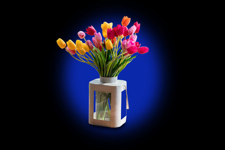 Tulips in a vase Separated from the background cliping part