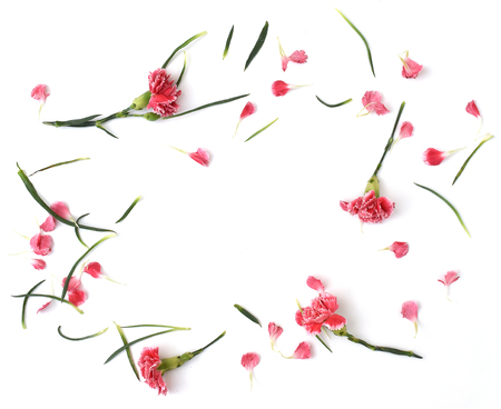 Framework from carnation flowers on white background. Flat lay composition with sample text. Top view. Banque d'images - 106138265