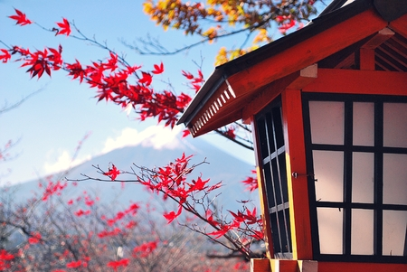 autumn color: Autumn color with fujisan and the japanese lamp