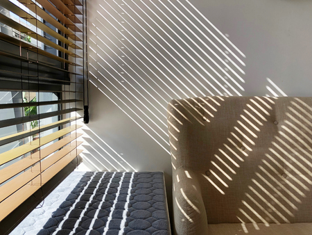 Sunlight shining through window blinds and creates beautiful reflection on wall and couch