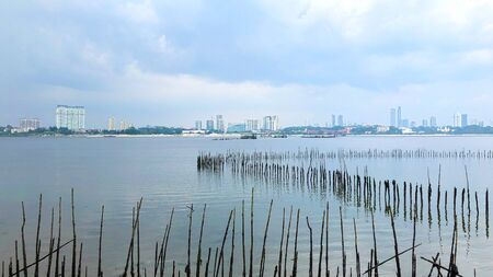 Wooden stick barrier to prevent coastal erosion in the Sungei Buloh Wetland reserve park