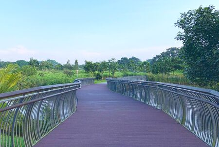 Wooden bridge/ walkway with metal railing surrounded by greenery
