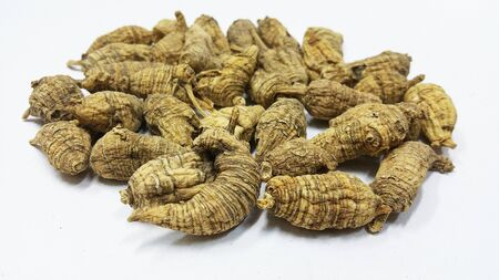 American Ginseng over a white background Stock Photo