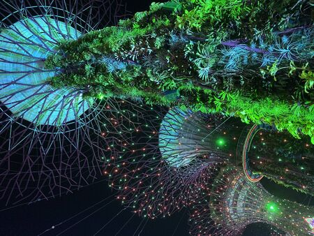 Singapore: 21 December 2019- The Supertree Grove at Gardens by the Bay during night time. Editorial