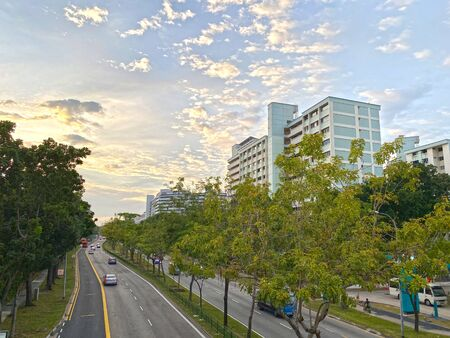 Street view with minimal traffic and greenery from overhead pedestrian bridges