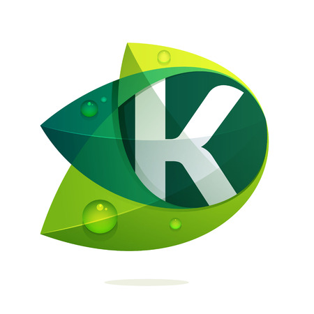 K letter with green leaves and dew drops. Vector design template elements for your application or corporate identity.