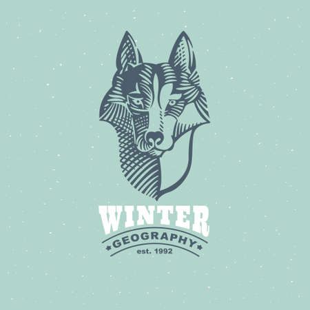 Husky or wolf head emblem in classic elegance engraving style. Vector drawing for your adventure corporate identity, vintage north illustration, sport team  , and etc.