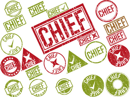 Collection of 22 red grunge rubber stamps with text CHIEF . Vector illustration