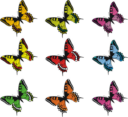 coloration: Collection of colorful butterflies