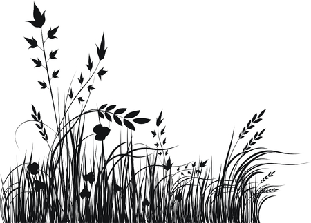 wild botany: Grass vector silhouette