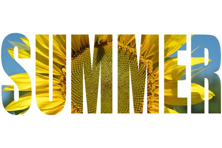 Summer-word with sunflower texture Stock Photo - 5443412