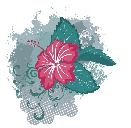 exotic flowers: Grunge hibiscus flower Illustration