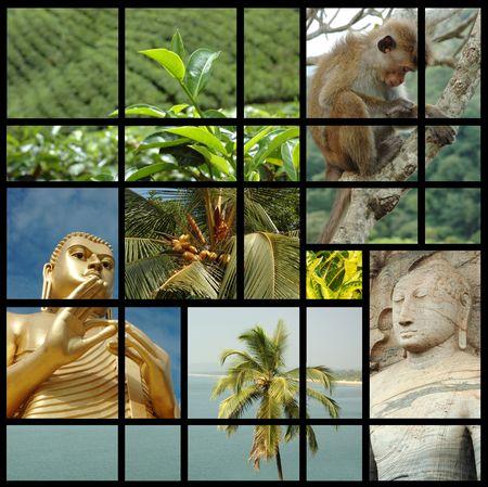 buddha sri lanka: Sri lanka collage with photos of Ceylon landmarks and nature
