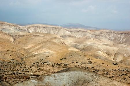 arboles secos: Panorama del desierto de Arava, Israel