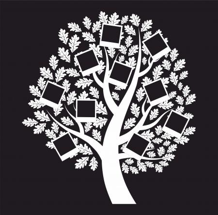 genealogical: Familia �rbol geneal�gico sobre fondo negro