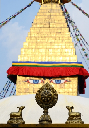 dharma: Buddha eyes of Bodhnath stupa and wheel of Dharma with two deers,Kathmandu,Nepal