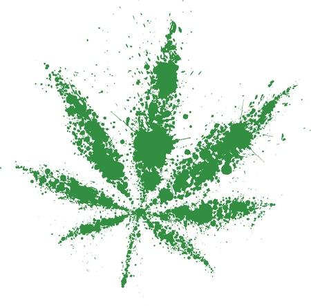 marihuana: Grunge cannabis hoja verde, ilustración vectorial