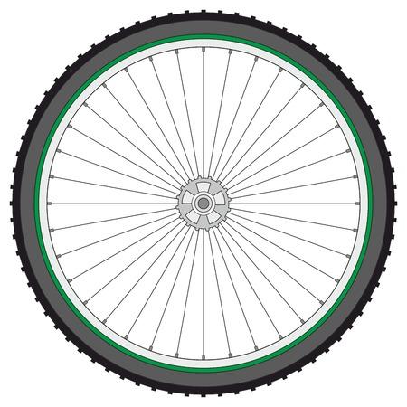 mountain bicycle: Ruota di bicicletta di montagna su uno sfondo bianco