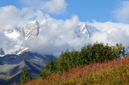 alpine zone: Mountain landscape in Upper Svaneti, zone of alpine meadows,famous trekking destination ,Caucasus mountains, Georgia, Europe