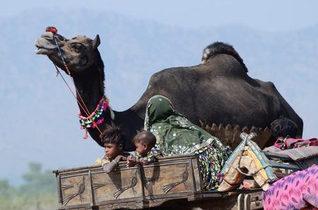 thar: Pushkar,India,November 13,2013 - nomadic tribal family from Thar desert preparing to traditional camel fair holiday at Pushkar sacred town, Rajasthan, India.Pushkar - one of seven holy cities in India