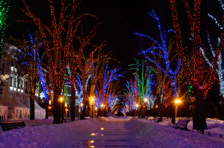 winter park: Winter night on Primorskii Boulevard decorated with colourful garlands,  famous place for resting of local people,Odessa,Ukraine,Europe