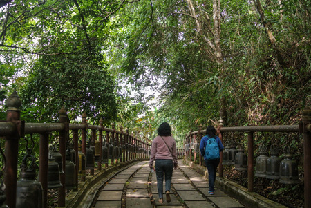 Walking trails within the national park Chiang Rai province North of Thailand