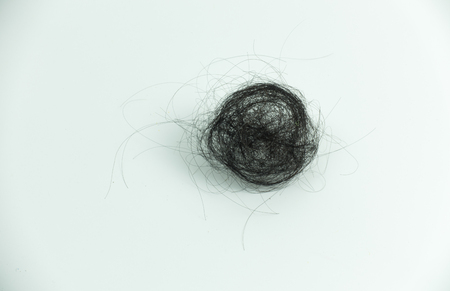 hairpiece: pile of hair loss on white background. Stock Photo