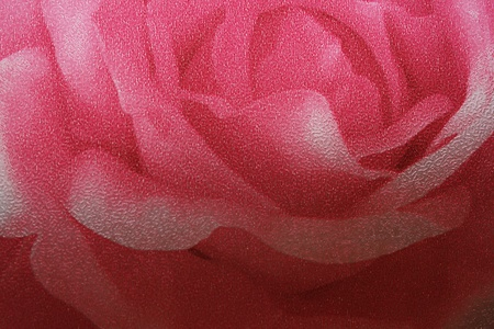Pink Rose Texture Printed on A Mirror
