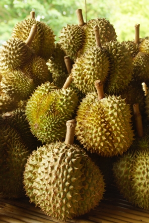 Durian, Thai Exotic Fruit of Thailand photo