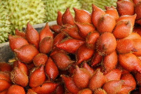 Zalacca or Sala, Thai Exotic Fruit of Thailand