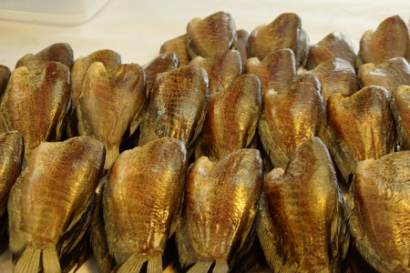 pectoralis: Dried Fish, Trichogaster pectoralis