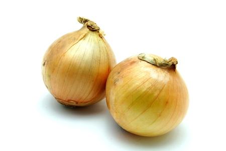 Fresh Onion on White Background photo