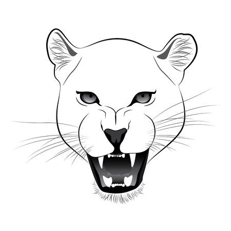 Lioness Vector Cartoon