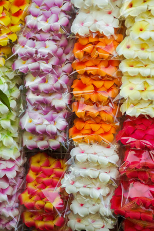 Close up of Colorful Artificial Plumeria Flowers Sold in Jatujak Market, Thailand photo