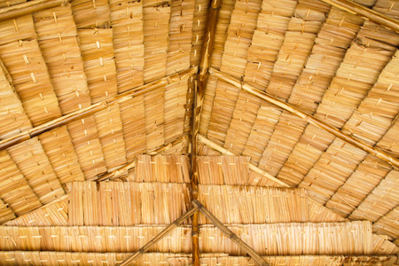 Closeup of Thatch Roof Texture