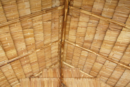 trussing: Closeup of Thatch Roof Texture