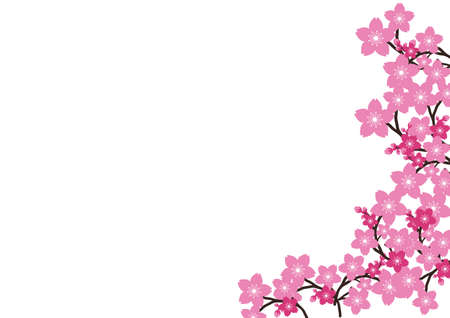 Cherry blossom, Sakura pink flowers background. Illusztráció