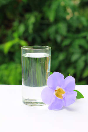 A glass of water and blue Thunbergia on the white table Stock Photo - 14025155