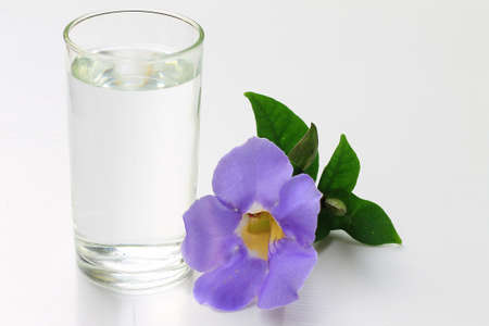 d       cor: A glass of water and blue Thunbergia on the white background Stock Photo