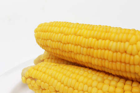 Sweet yellow corns on white background Stock Photo