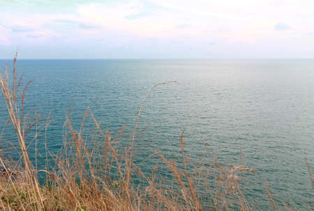 A sea view with dune grass in the foreground