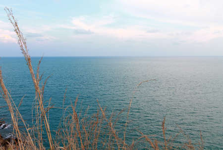 Tall Dune Grass in the foreground of the seaview Stock Photo