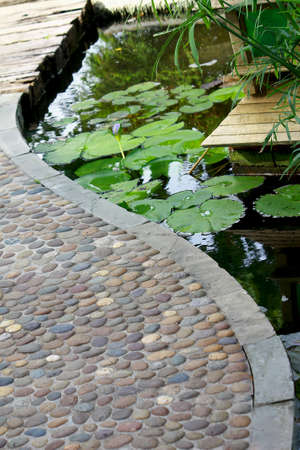 Garden stone path over the pond with lotus in the garden photo