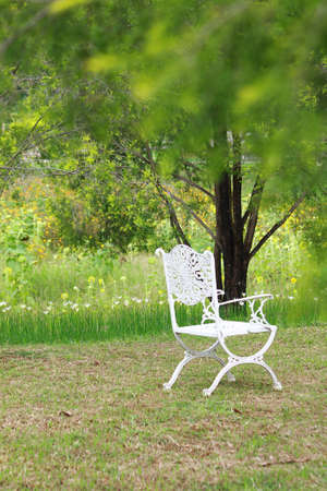The luxury white chair places in the beautiful garden Stock Photo