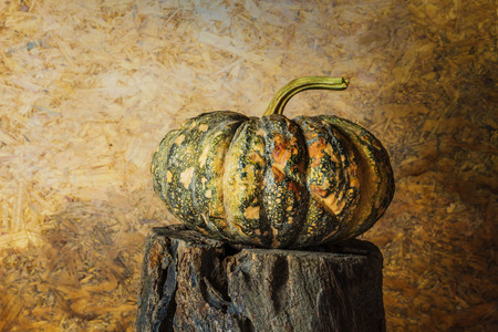 ornamental background: still life pumpkin with on timber.