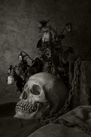 Still life with a human skull with a red rose in a vase beside the timber, and chains. photo