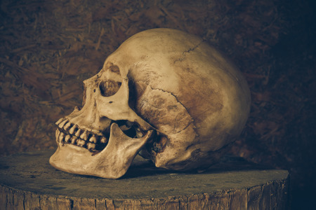masters of rock: Still Life with a Skull concept on the art.