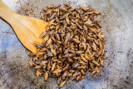 deep fried: Fried insects as a snack in Thailand. Stock Photo