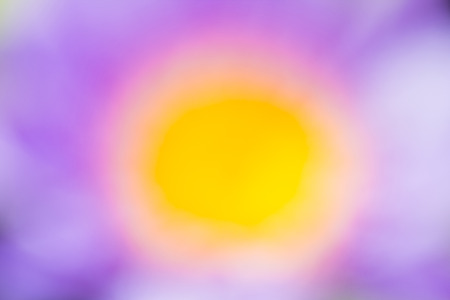 input: Purple and Yellow abstract natural background Used for text input